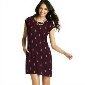 Ann Taylor LOFT Smitten Kitten Cat Dress Size M
